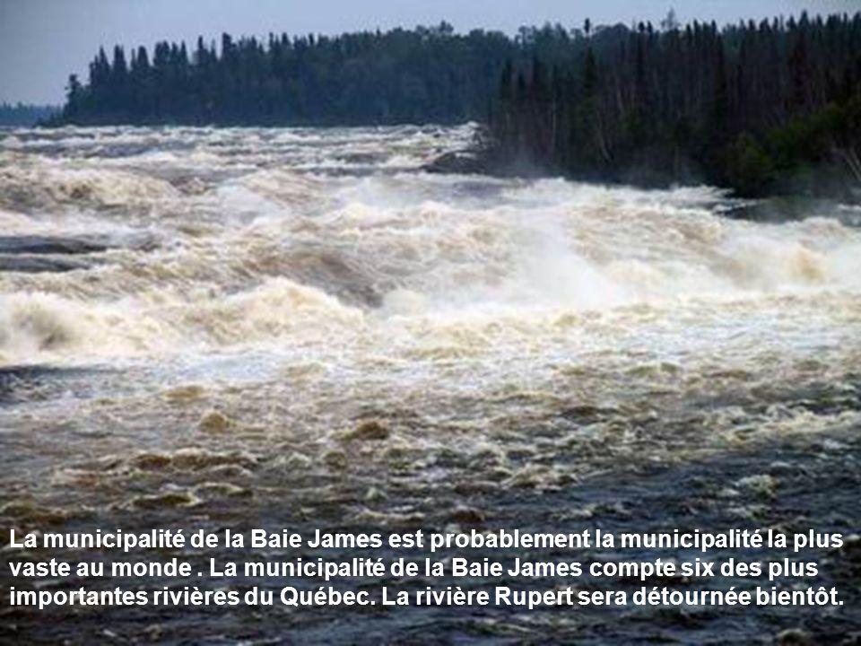 La municipalité de la Baie James est probablement la municipalité la plus vaste au monde .