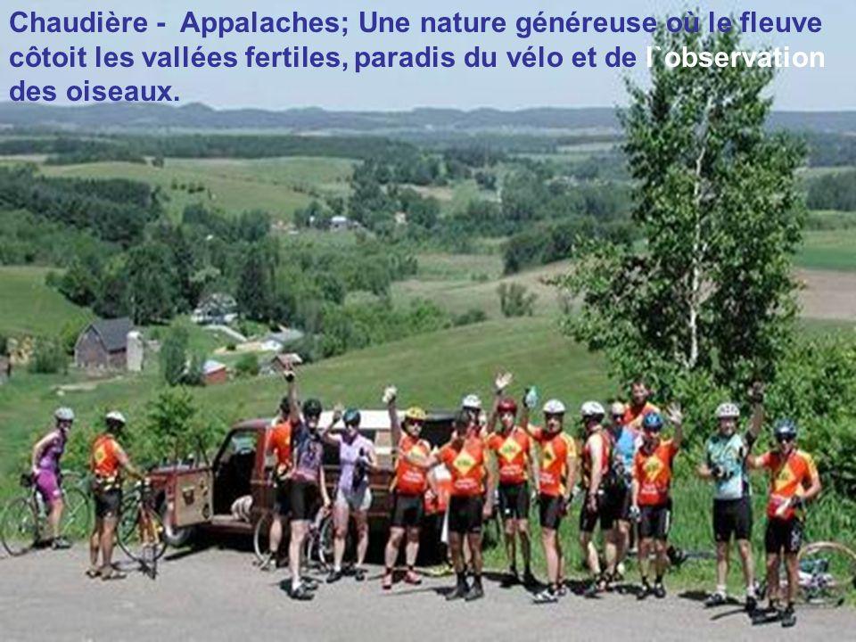 Chaudière - Appalaches; Une nature généreuse où le fleuve côtoit les vallées fertiles, paradis du vélo et de l`observation des oiseaux.