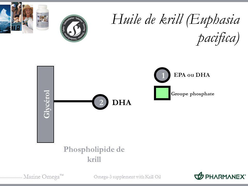 Huile de krill (Euphasia pacifica)