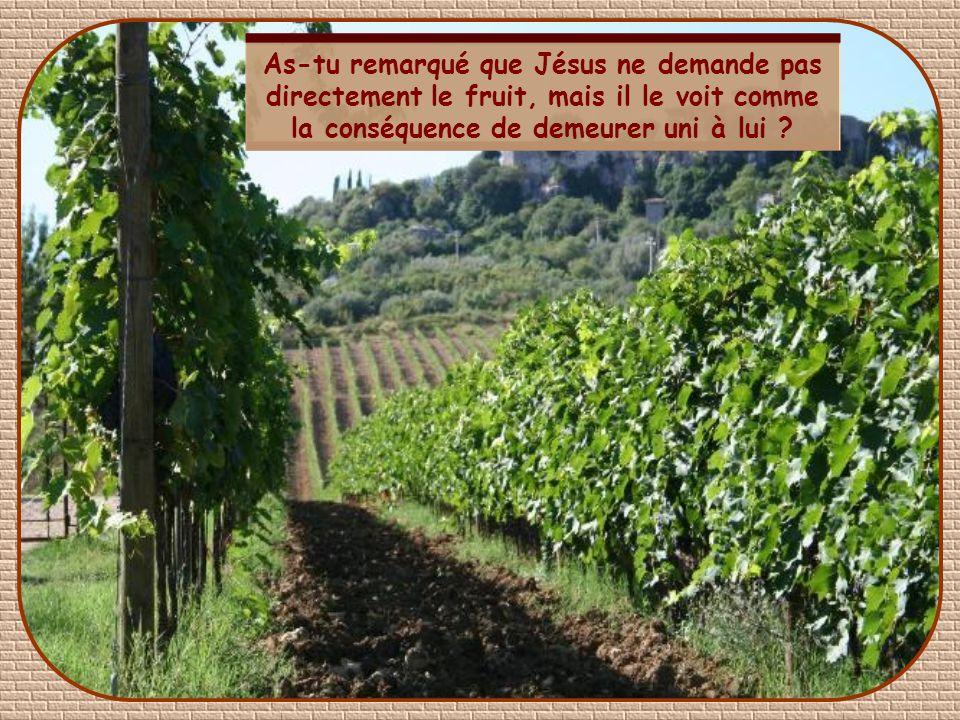 As-tu remarqué que Jésus ne demande pas directement le fruit, mais il le voit comme la conséquence de demeurer uni à lui