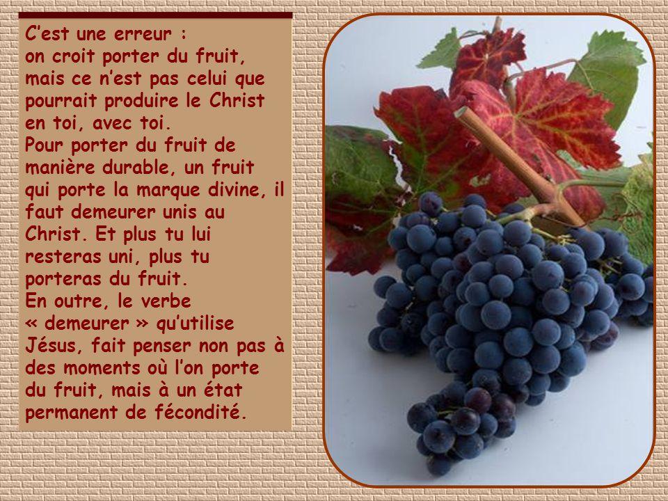 C'est une erreur : on croit porter du fruit, mais ce n'est pas celui que pourrait produire le Christ en toi, avec toi.