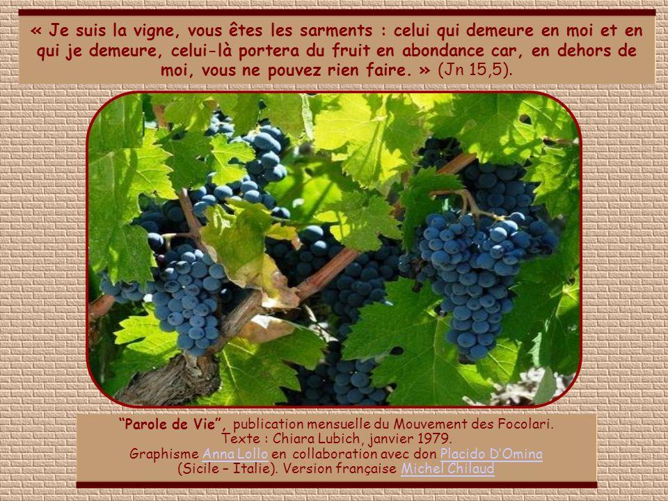 « Je suis la vigne, vous êtes les sarments : celui qui demeure en moi et en qui je demeure, celui-là portera du fruit en abondance car, en dehors de moi, vous ne pouvez rien faire. » (Jn 15,5).