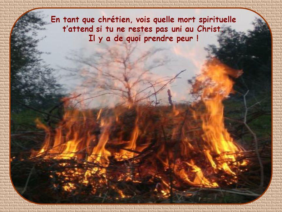 En tant que chrétien, vois quelle mort spirituelle t'attend si tu ne restes pas uni au Christ.