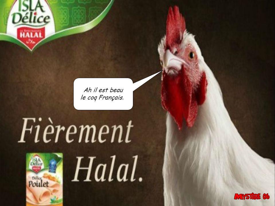Ah il est beau le coq Français.