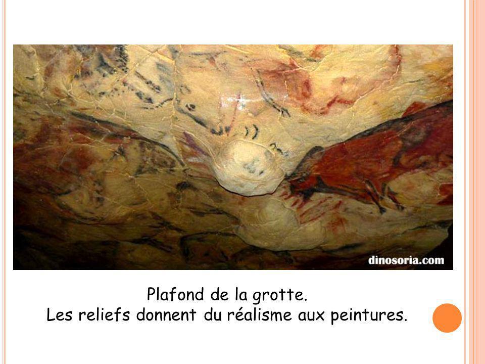 Les reliefs donnent du réalisme aux peintures.