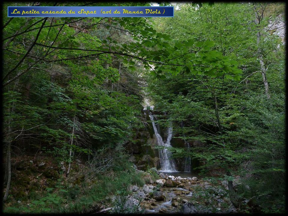 La petite cascade du Sapet (col de Menée Diois )