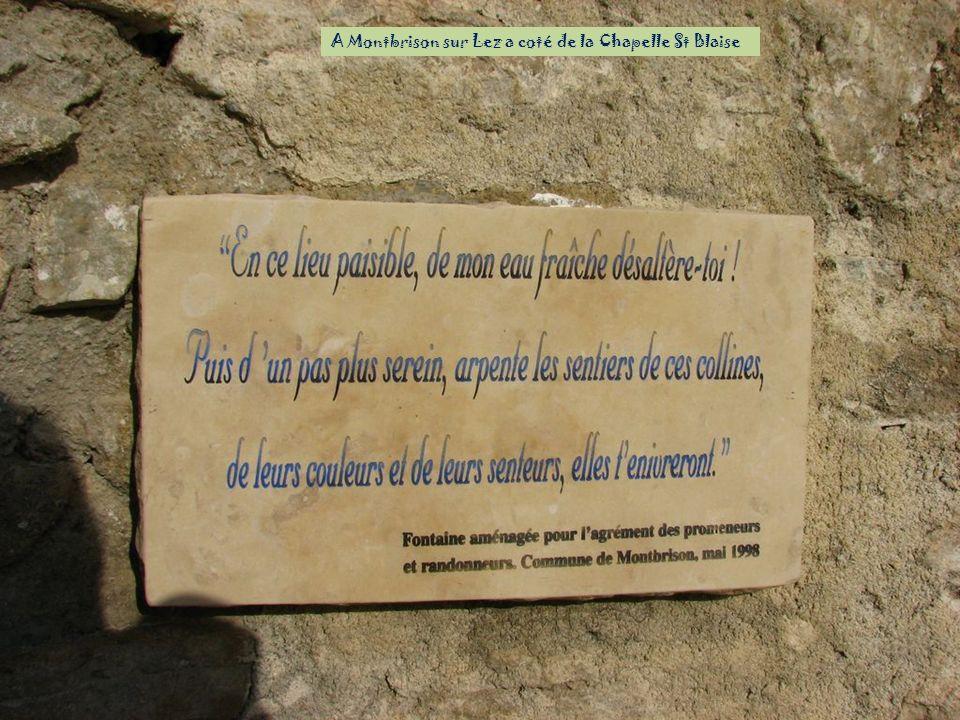 A Montbrison sur Lez a coté de la Chapelle St Blaise