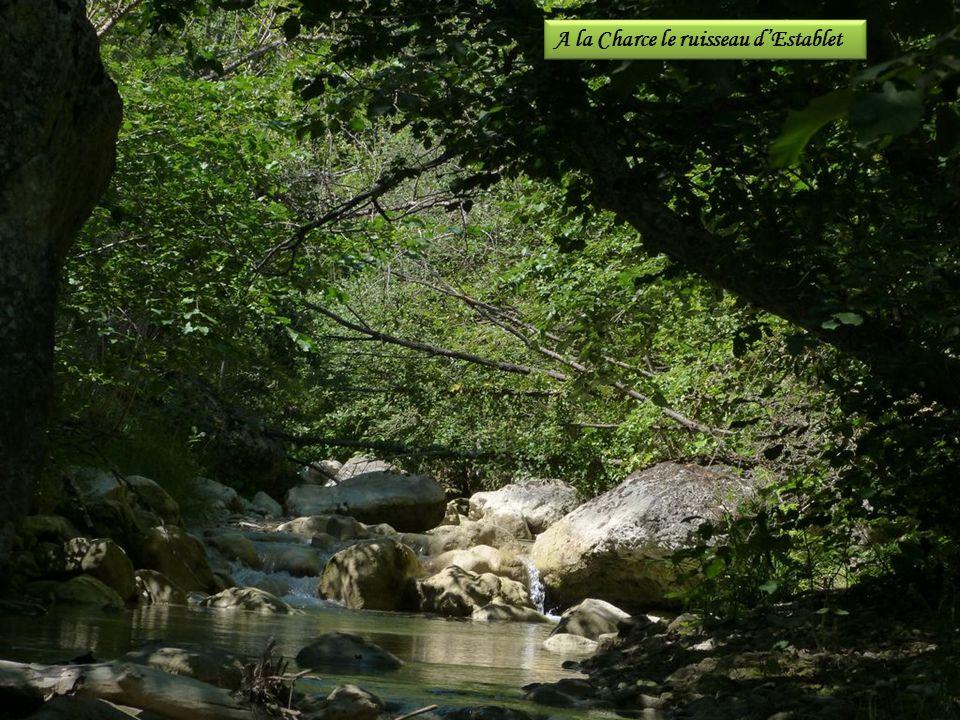 A la Charce le ruisseau d'Establet