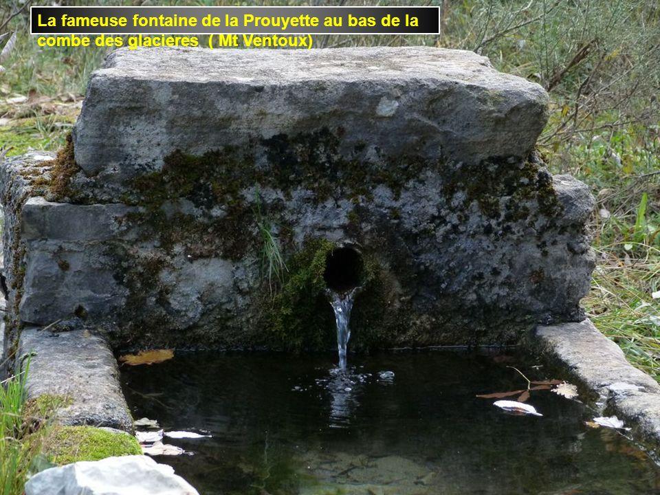 La fameuse fontaine de la Prouyette au bas de la combe des glacieres ( Mt Ventoux)