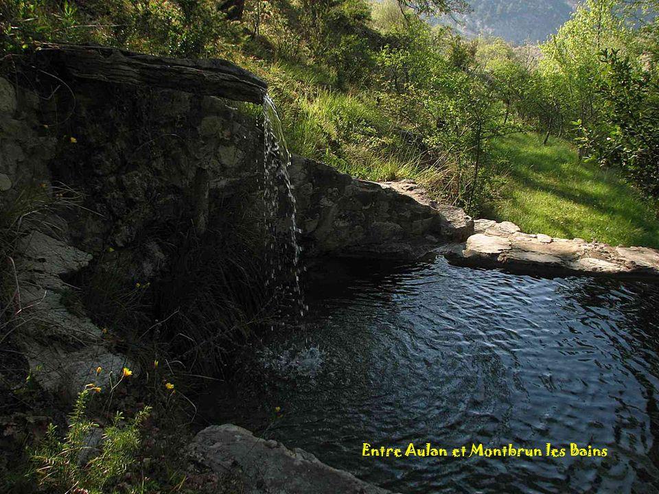 Entre Aulan et Montbrun les Bains