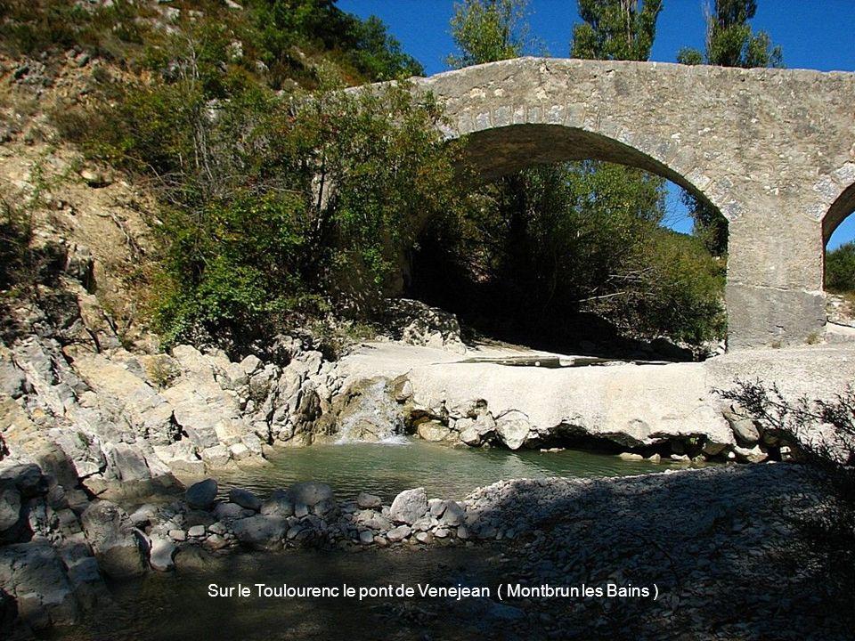 Sur le Toulourenc le pont de Venejean ( Montbrun les Bains )
