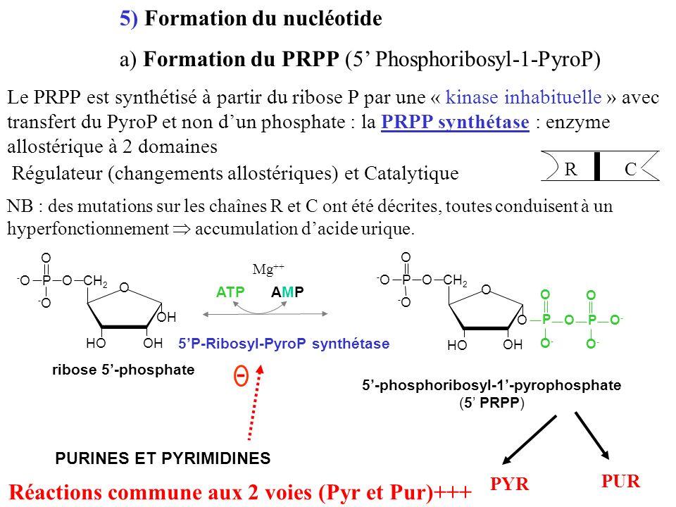 5'-phosphoribosyl-1'-pyrophosphate
