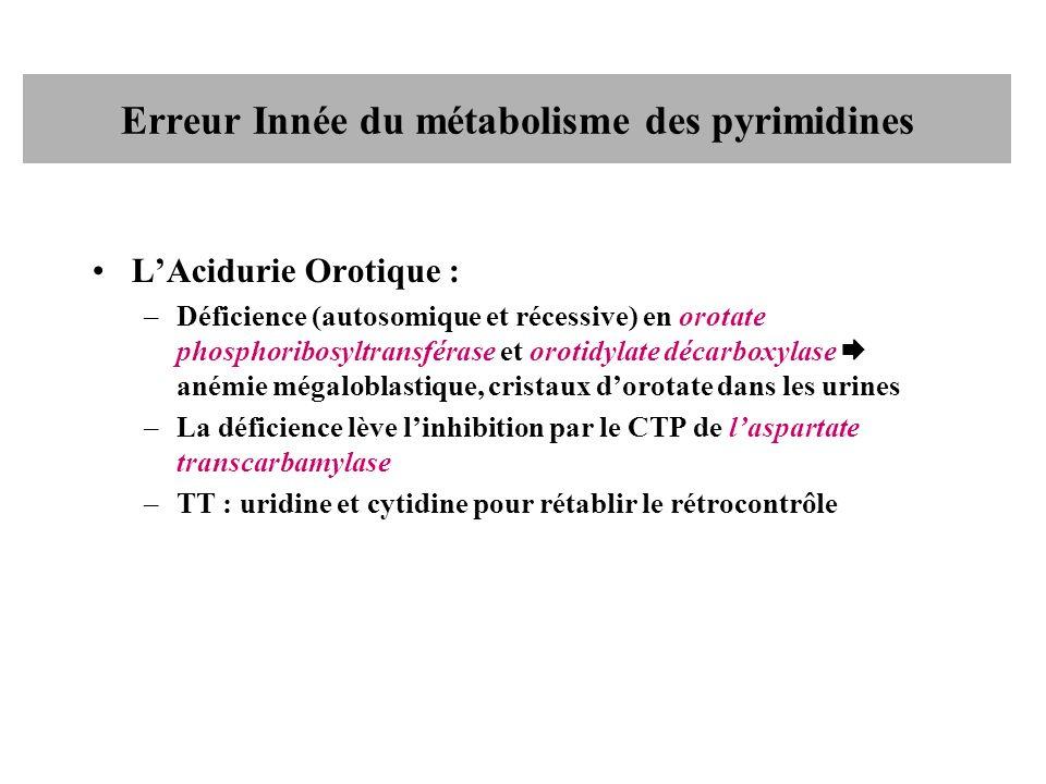 Erreur Innée du métabolisme des pyrimidines