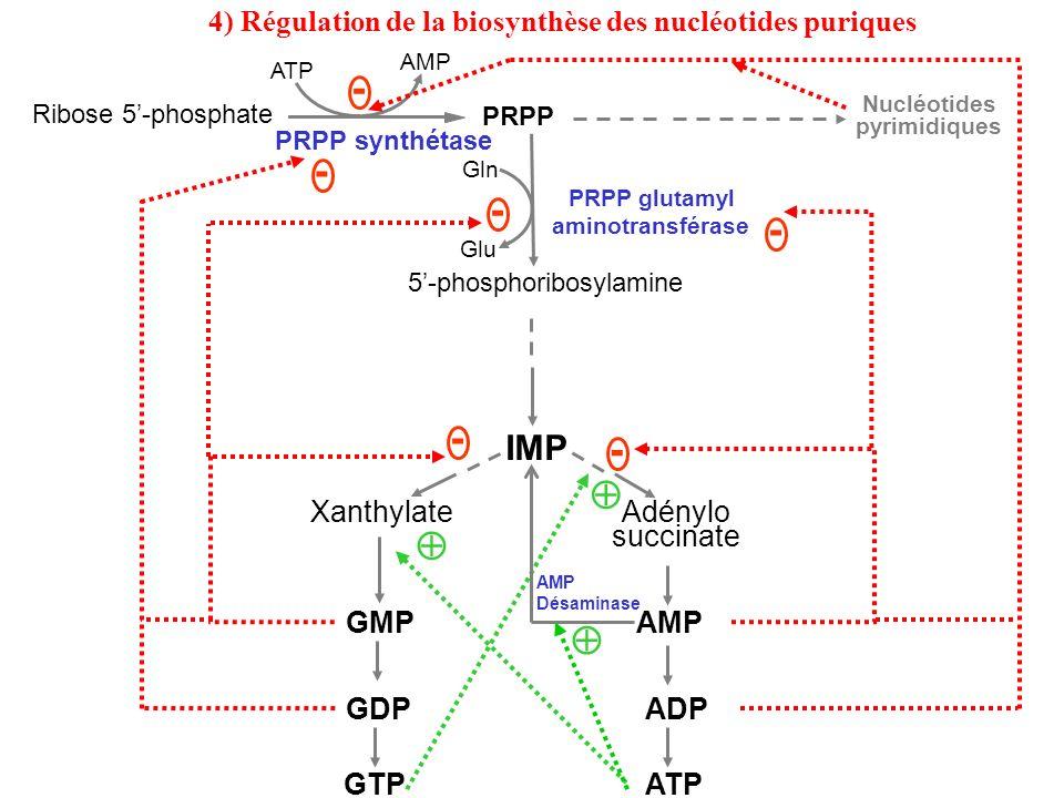 4) Régulation de la biosynthèse des nucléotides puriques