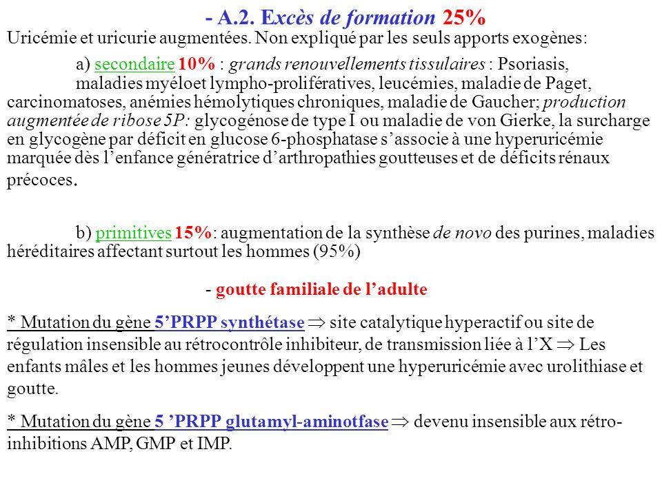- A.2. Excès de formation 25% Uricémie et uricurie augmentées. Non expliqué par les seuls apports exogènes: