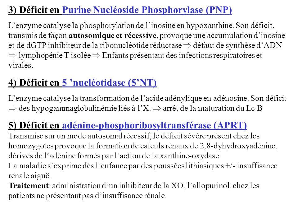 3) Déficit en Purine Nucléoside Phosphorylase (PNP)