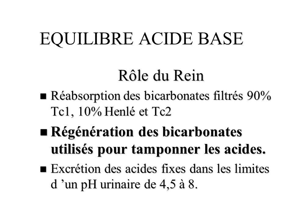 EQUILIBRE ACIDE BASE Rôle du Rein
