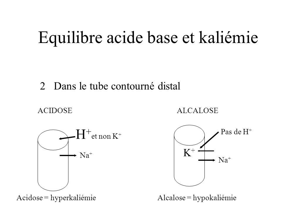Equilibre acide base et kaliémie