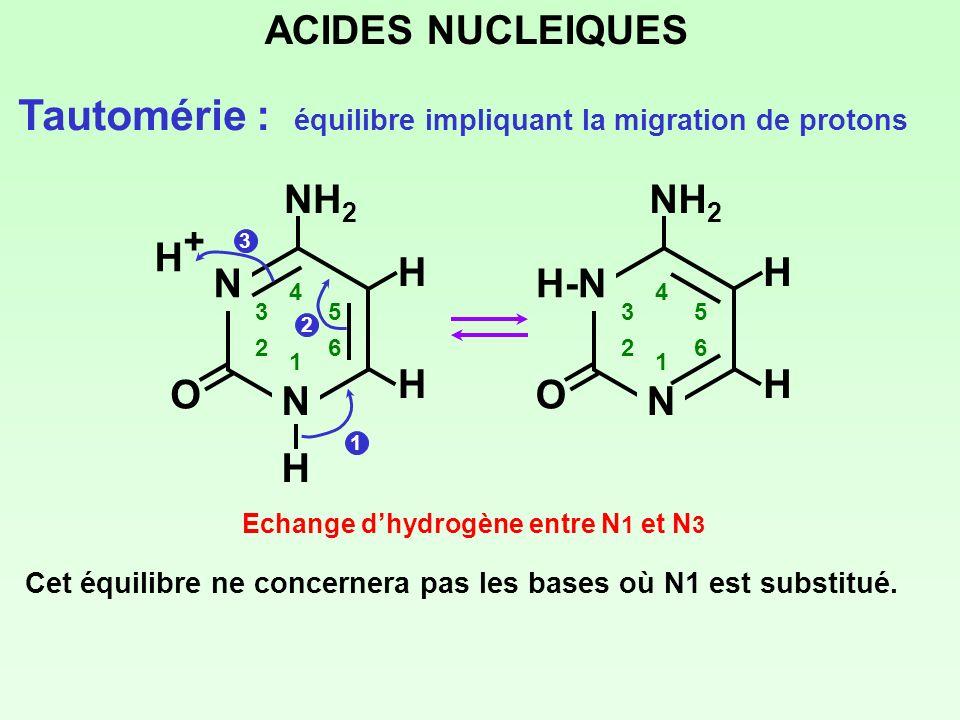 Tautomérie : équilibre impliquant la migration de protons