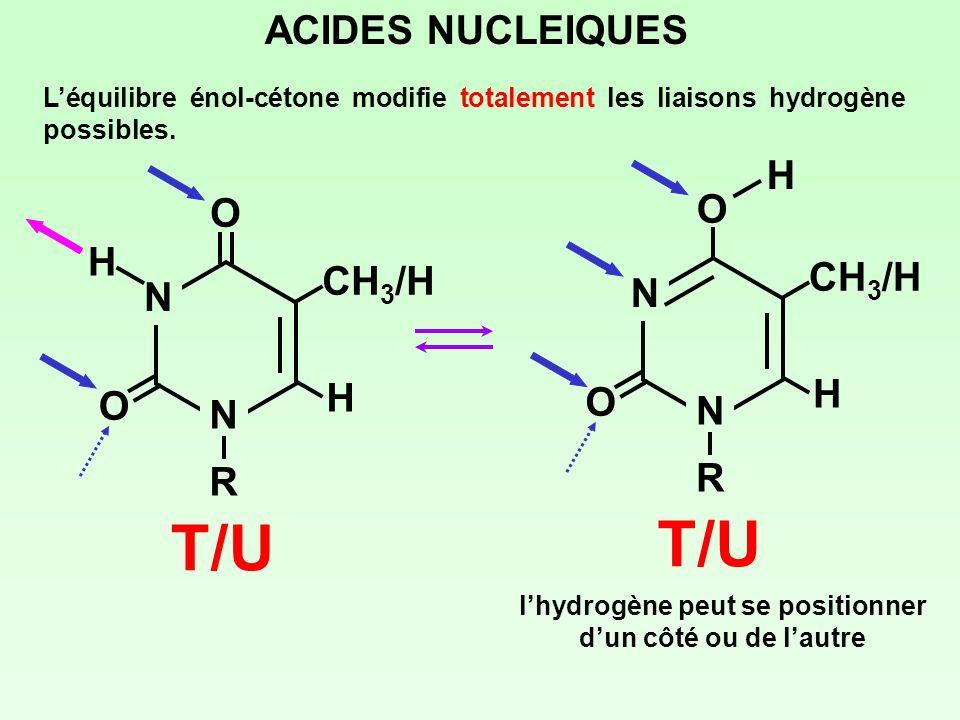 l'hydrogène peut se positionner d'un côté ou de l'autre