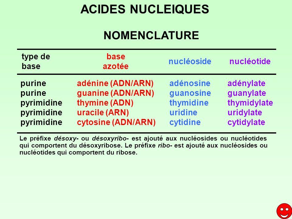 ACIDES NUCLEIQUES NOMENCLATURE base azotée type de base nucléoside