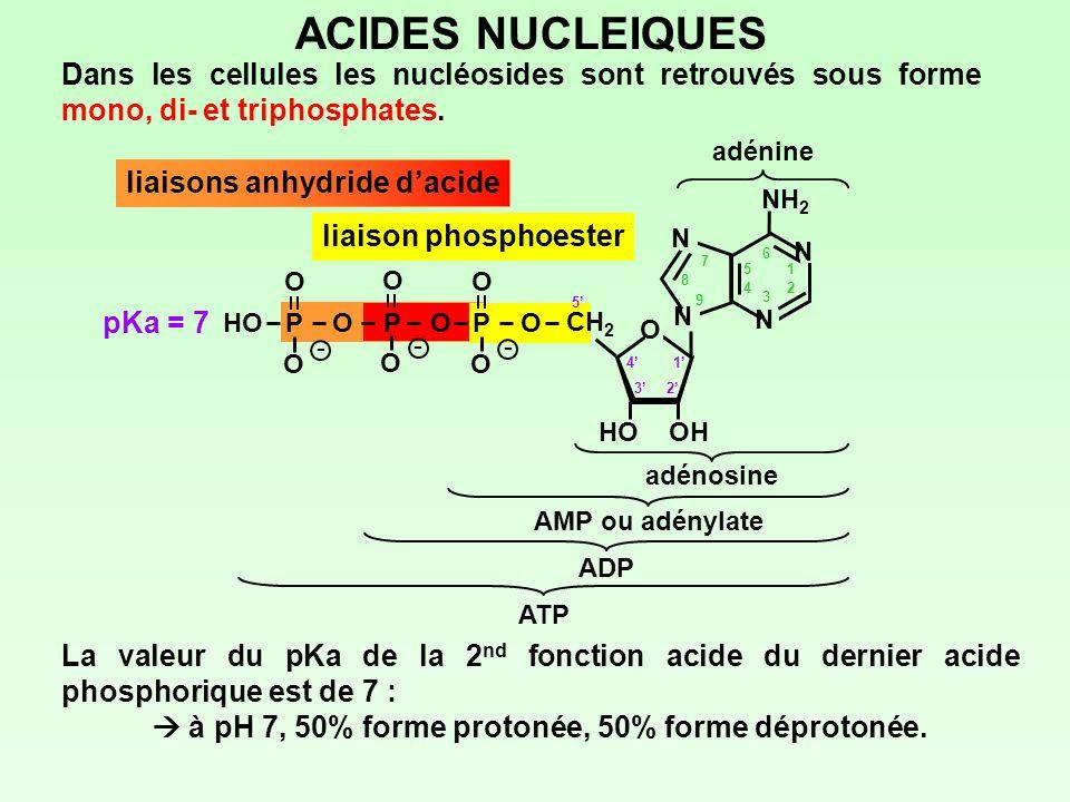  à pH 7, 50% forme protonée, 50% forme déprotonée.