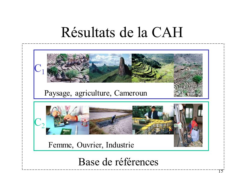 Résultats de la CAH C1 C2 Base de références