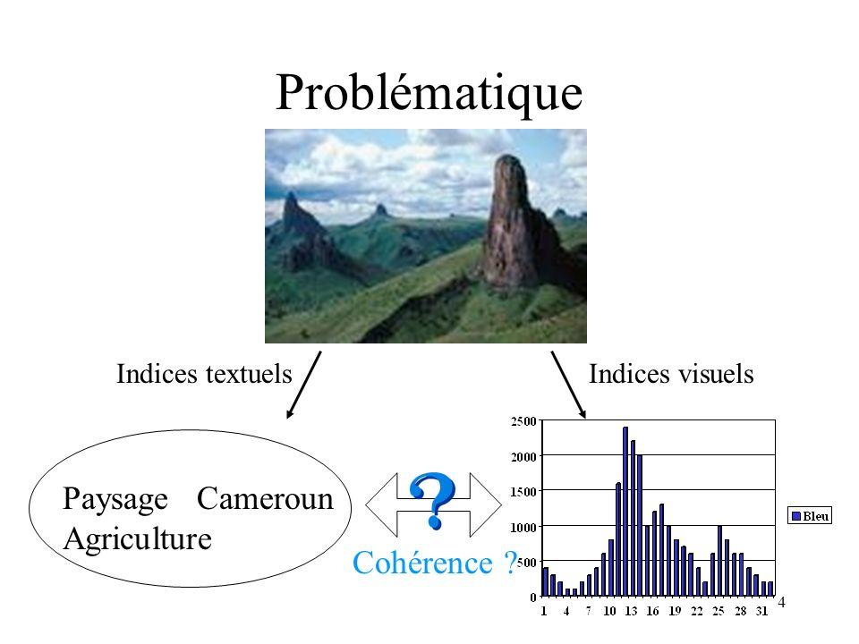 Problématique Paysage Cameroun Agriculture Cohérence