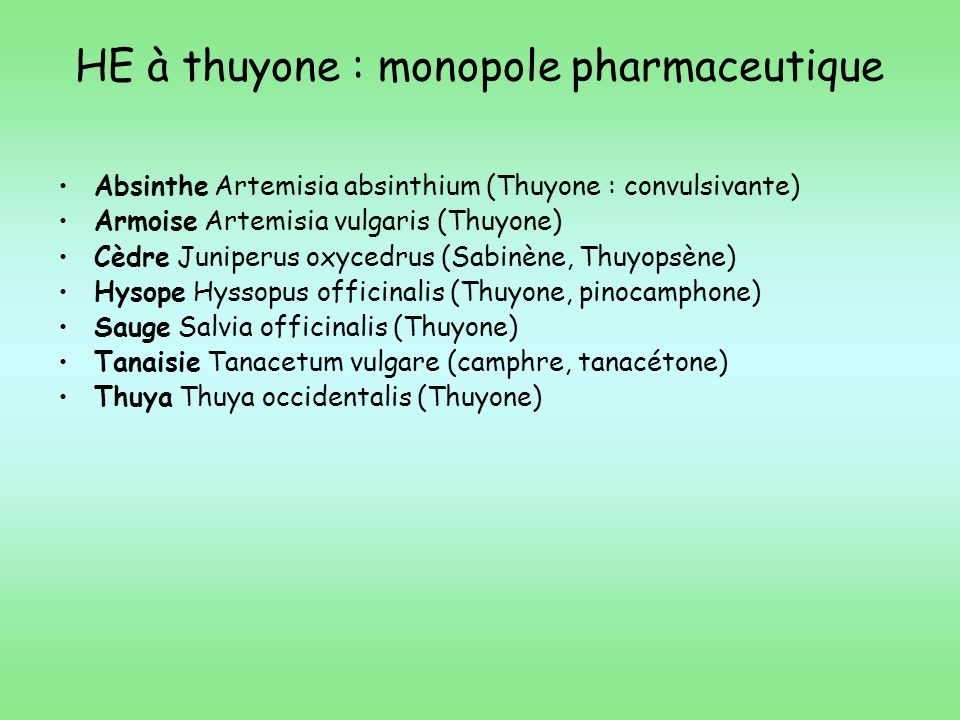 HE à thuyone : monopole pharmaceutique