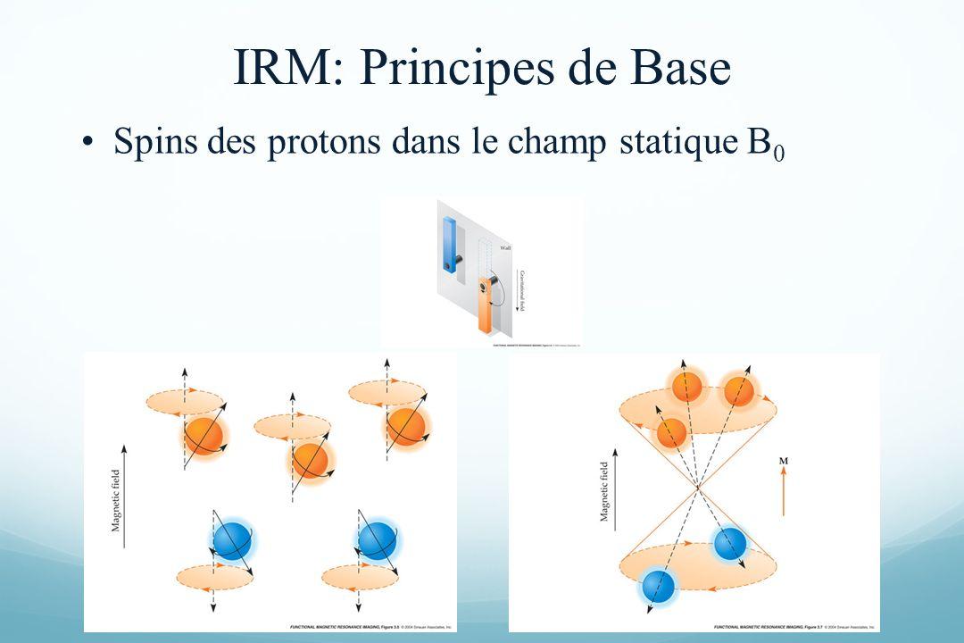 IRM: Principes de Base Spins des protons dans le champ statique B0
