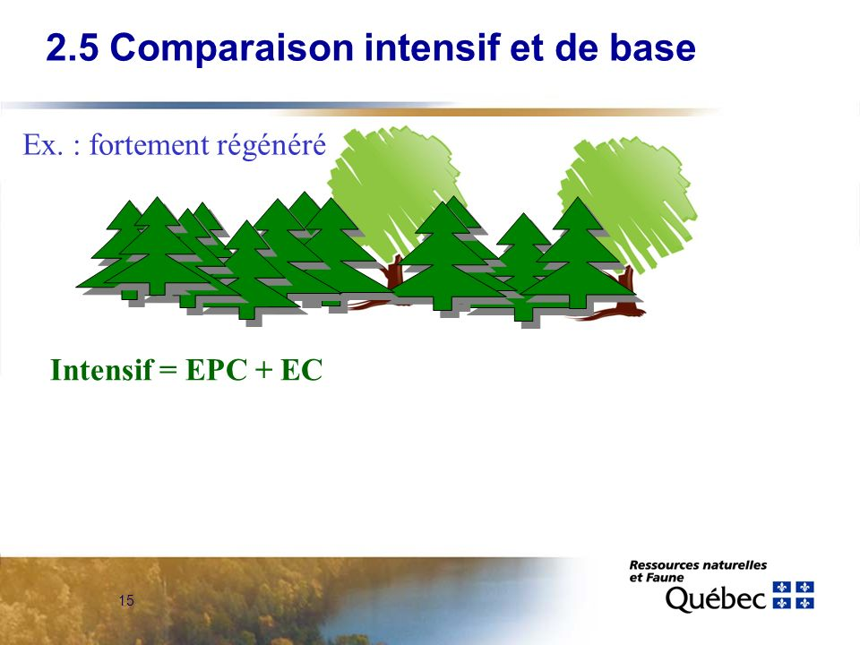 2.5 Comparaison intensif et de base