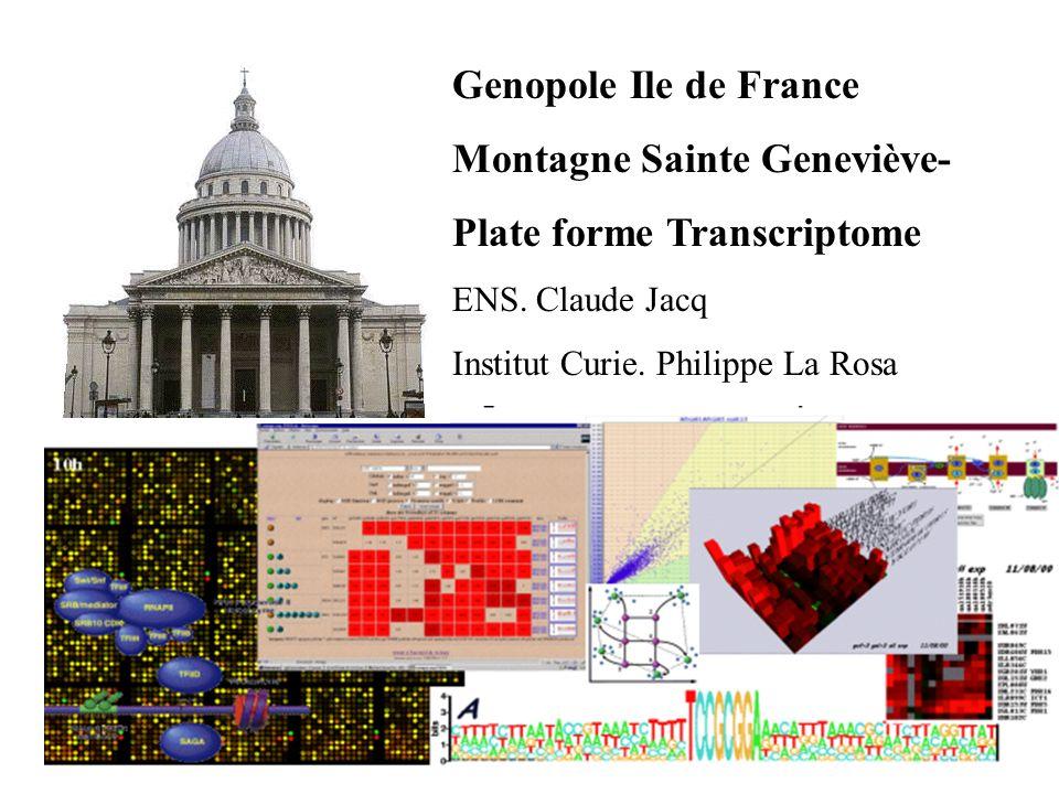 Montagne Sainte Geneviève- Plate forme Transcriptome