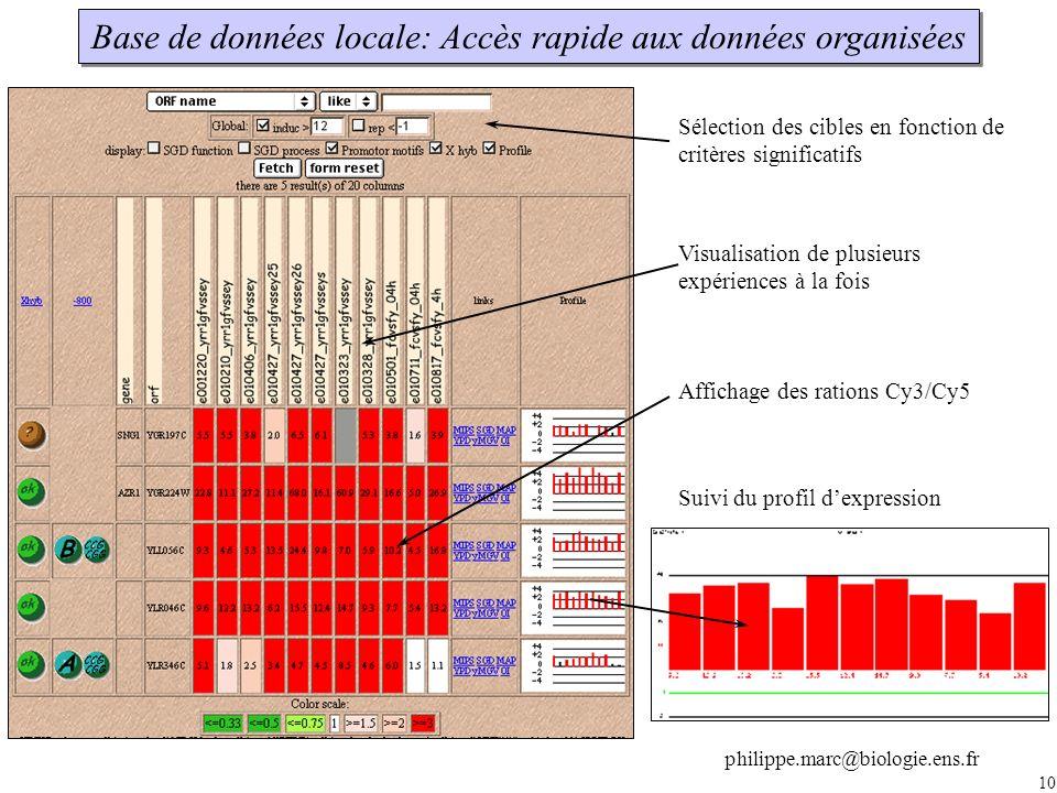 Base de données locale: Accès rapide aux données organisées