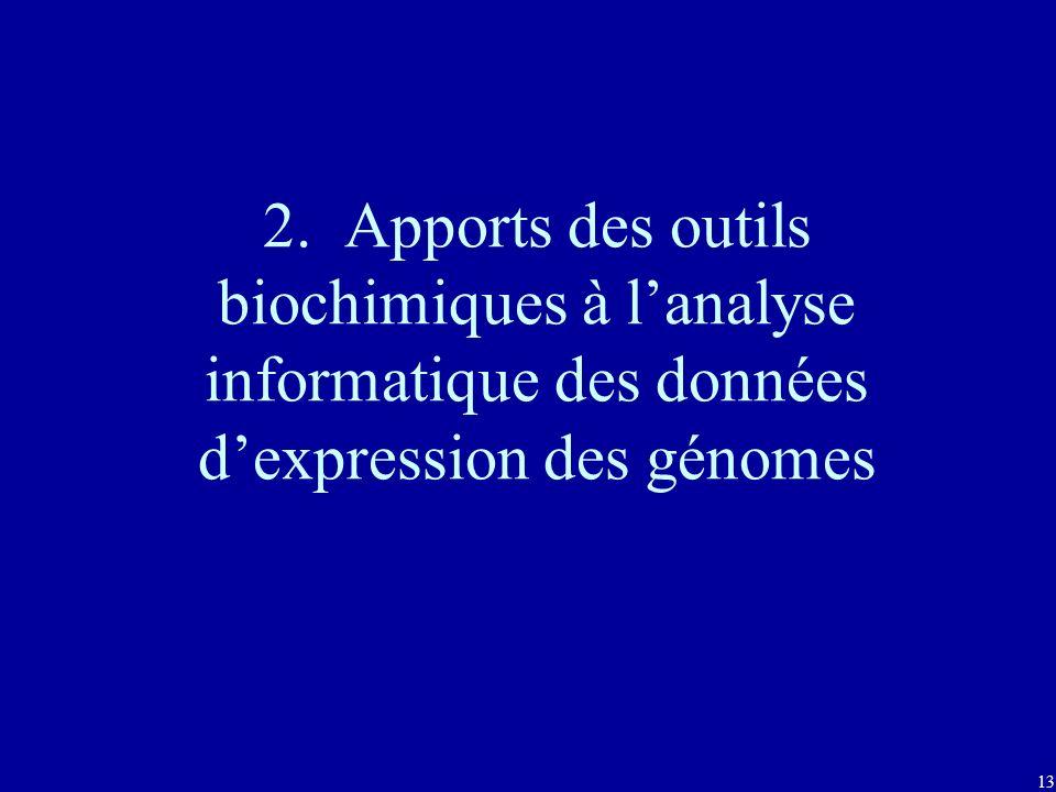 2. Apports des outils biochimiques à l'analyse informatique des données d'expression des génomes