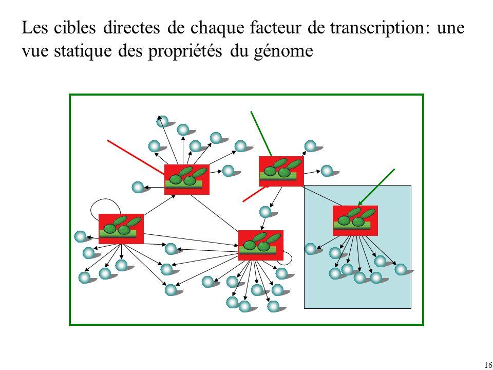 Les cibles directes de chaque facteur de transcription: une vue statique des propriétés du génome