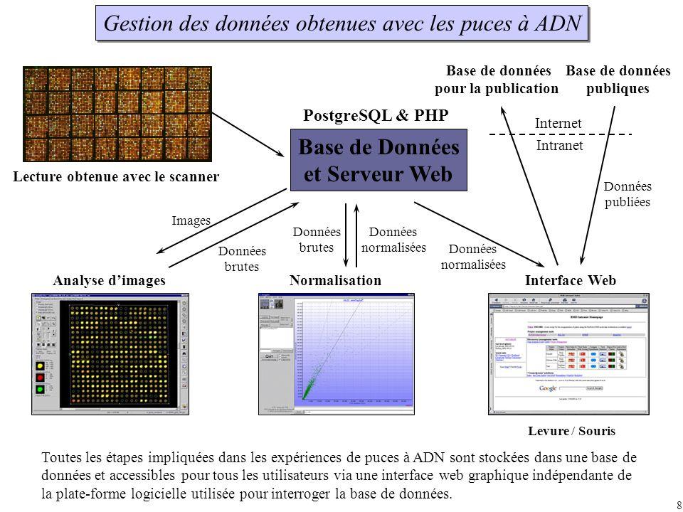 Base de données pour la publication Base de données publiques