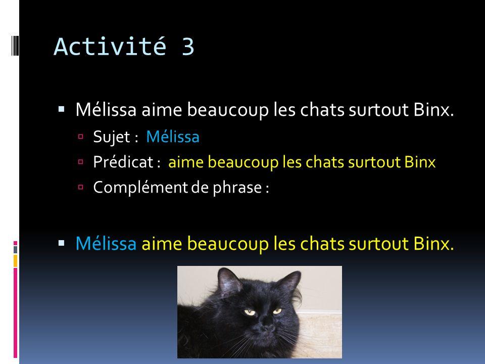 Activité 3 Mélissa aime beaucoup les chats surtout Binx.