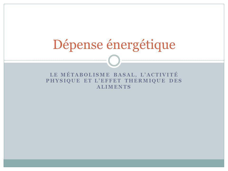 Dépense énergétique le métabolisme basal, l'activité physique et l'effet thermique des aliments