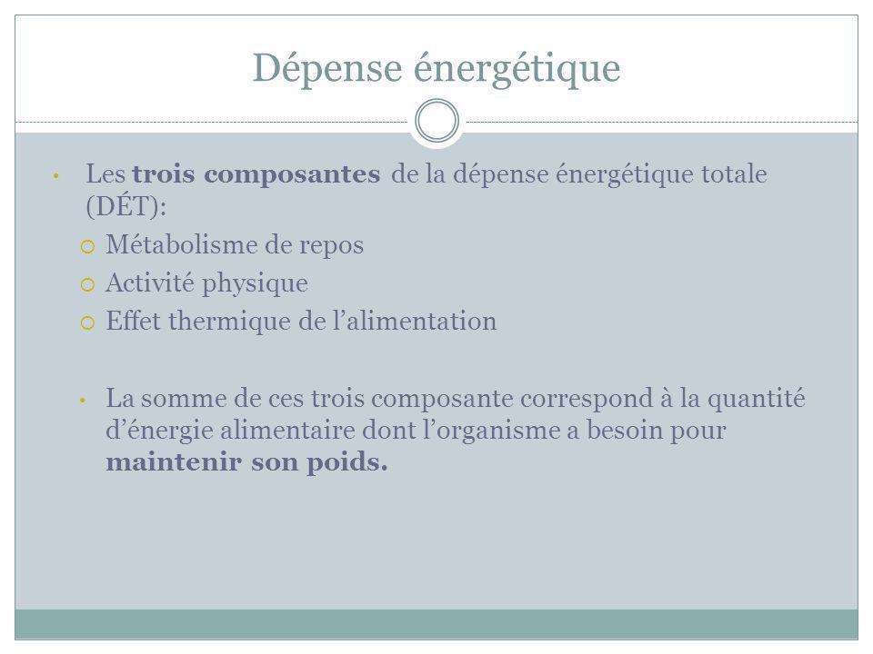 Dépense énergétique Les trois composantes de la dépense énergétique totale (DÉT): Métabolisme de repos.
