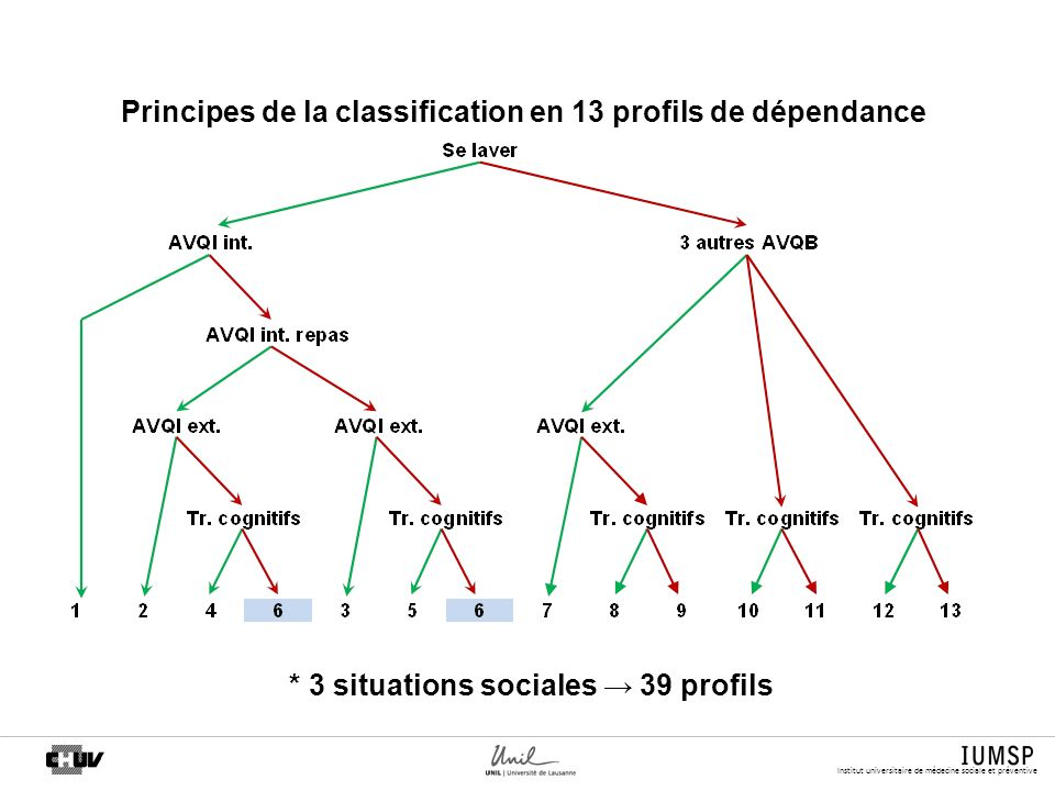 Principes de la classification en 13 profils de dépendance