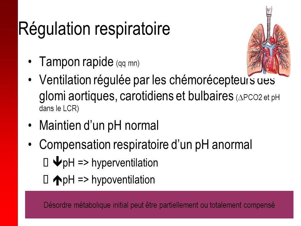 Régulation respiratoire