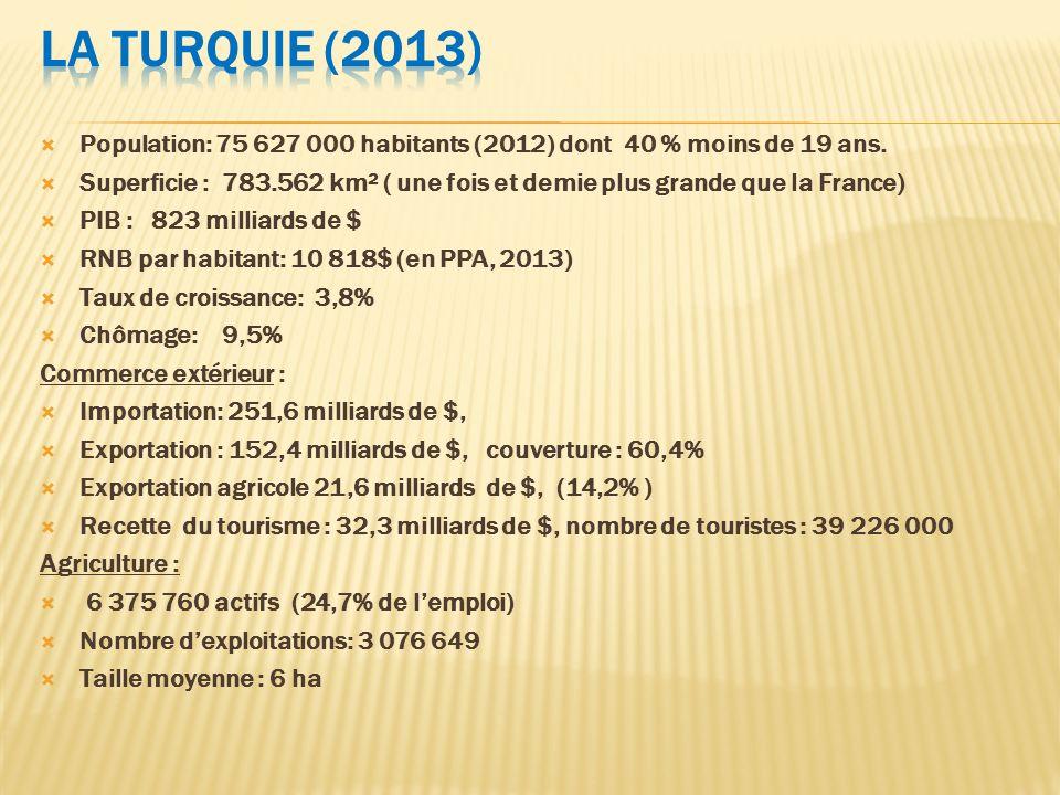 La Turquie (2013) Population: 75 627 000 habitants (2012) dont 40 % moins de 19 ans.