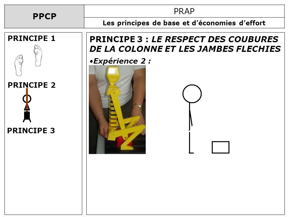 PRINCIPE 1 PRINCIPE 3 : LE RESPECT DES COUBURES DE LA COLONNE ET LES JAMBES FLECHIES. Expérience 2 :