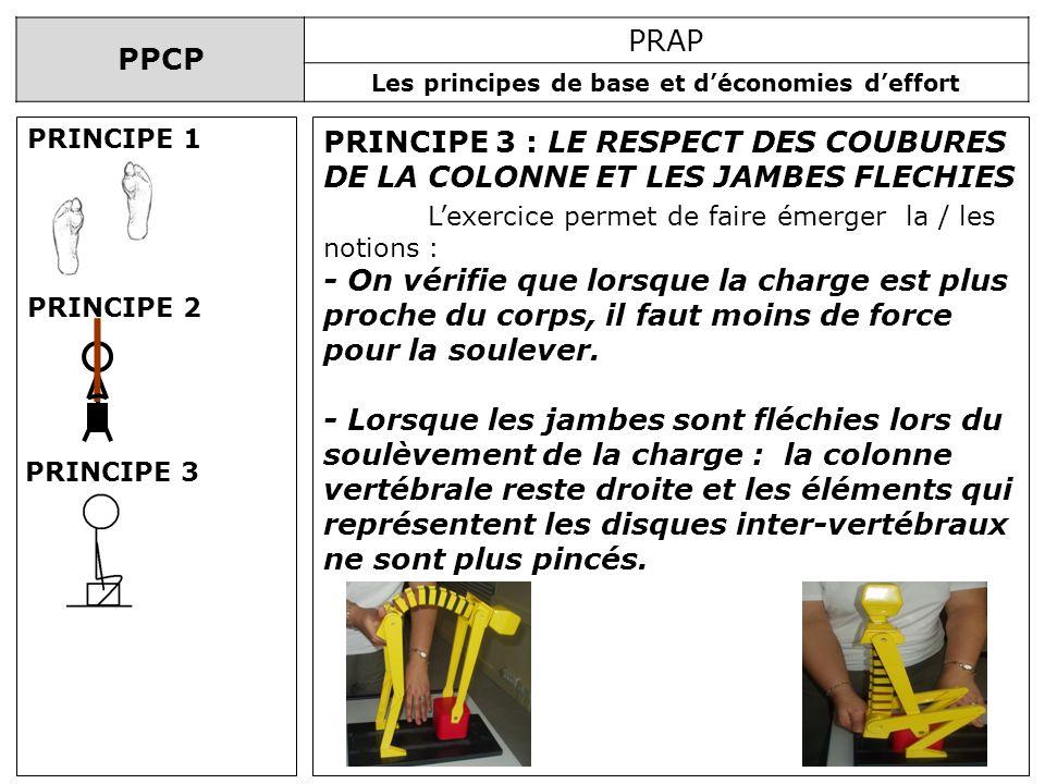 PRINCIPE 1 PRINCIPE 3 : LE RESPECT DES COUBURES DE LA COLONNE ET LES JAMBES FLECHIES. L'exercice permet de faire émerger la / les notions :