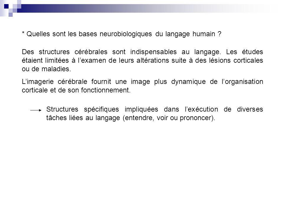 * Quelles sont les bases neurobiologiques du langage humain