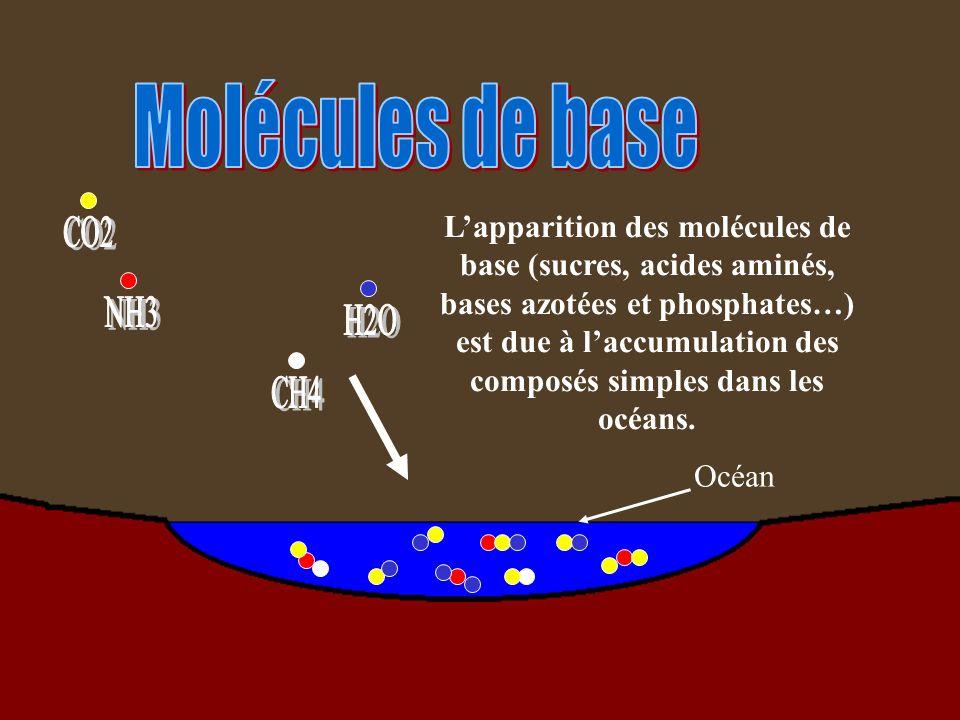 Molécules de base