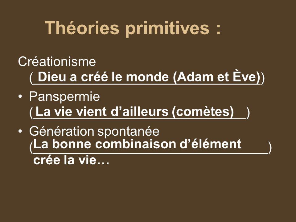 Théories primitives : Créationisme (_______________________________)