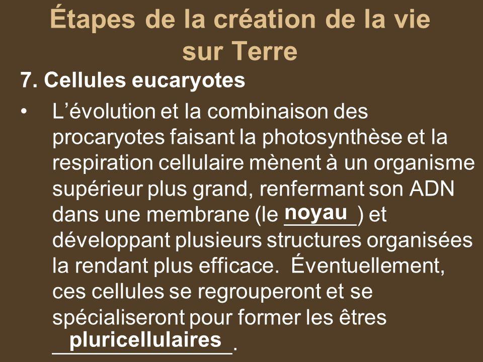 Étapes de la création de la vie sur Terre