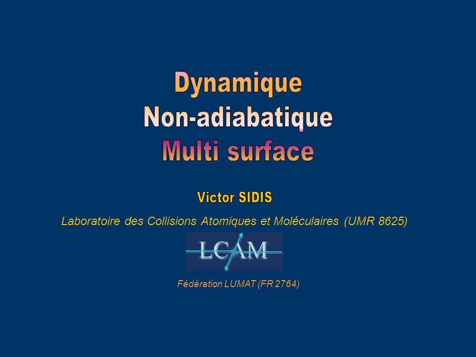 Laboratoire des Collisions Atomiques et Moléculaires (UMR 8625)