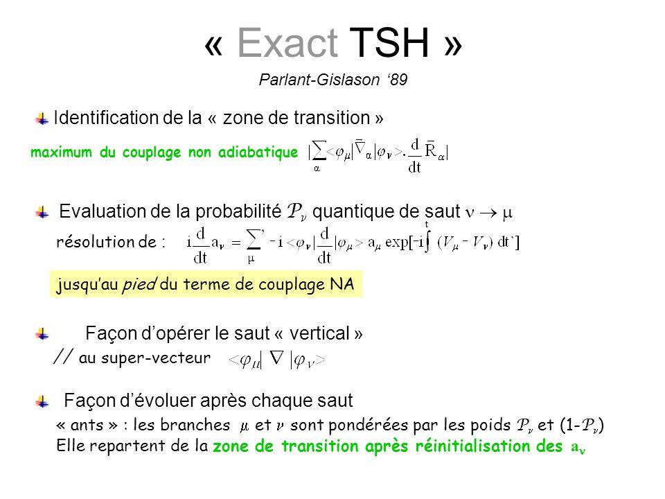 « Exact TSH »   au super-vecteur